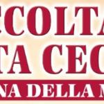 Read more about the article Santa Cecilia